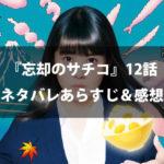 【実写ドラマ】『忘却のサチコ』最終回12話のネタバレあらすじ&感想
