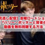 【見逃し配信】金曜ロードショー!映画『ハリー・ポッターと賢者の石』の動画を無料視聴する方法